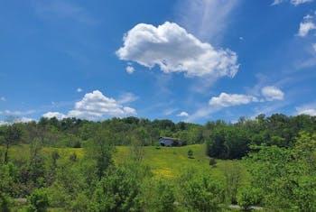 Happy Creek Rd- 44 Acres
